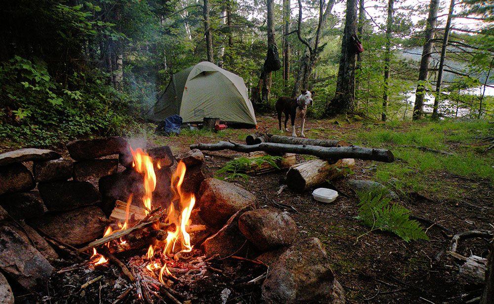 Campsite at Siamese Ponds